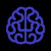 velocity brain