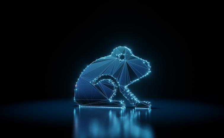 Fritzfrog and the Lockheed Cyber Kill Chain